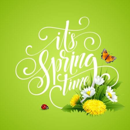 Spring Hand Lettering on background with flowers. Vector illustration EPS10